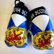 Boxing Gloves Novelty